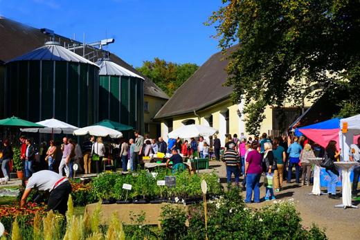 Herbstmarkt Schloss Scherneck